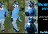 blue-grey-wolf-partial