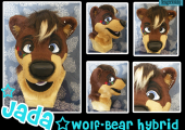 jada-wolf-bear-hybrid