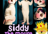 siddy-the-mouse