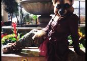 lyra-realistic-wolf-jackal