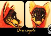 fire-cyote