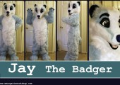 Jay the badger
