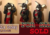 donkey_partial_premade_websiteversion