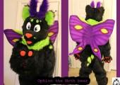 ophion moth bear