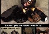 1426106411.sarahdee_onasi_german_shepherd