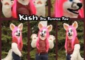 1429489177.sarahdee_kish_fox
