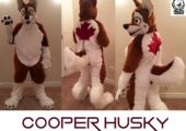 cooperhusky collage