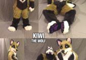 kiwi_collage