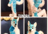 tundra collage